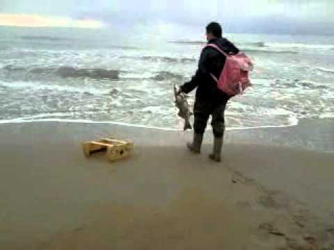 Pesca con barchino a pachino sr youtube for Barchetta da pesca