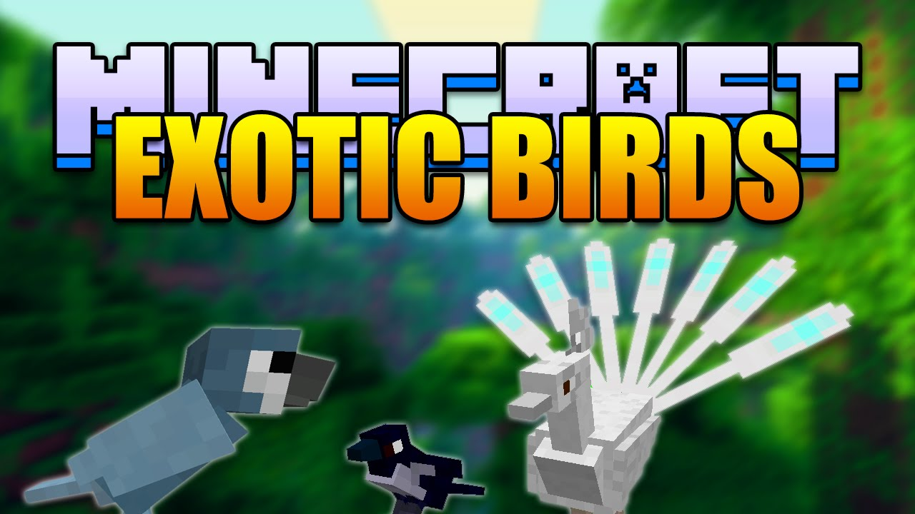 Minecraft Exotic Birds Mod Peacocks Woodpeckers Minecraft V1