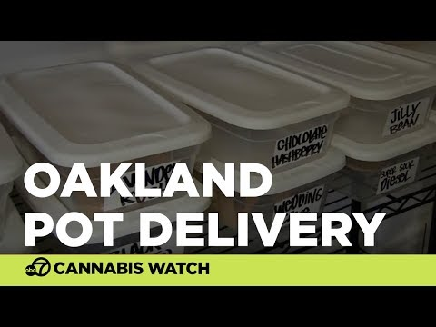 Oakland pot delivery company hopes to expand to recreational users