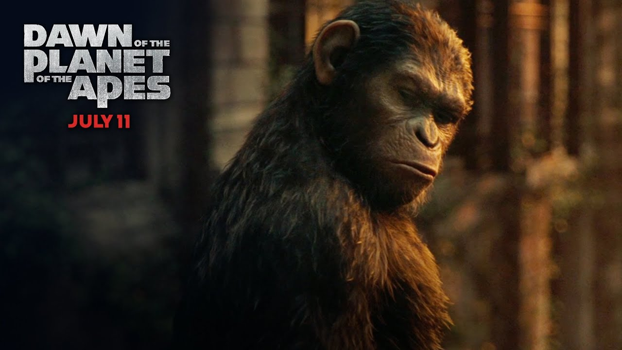 Dawn of the planet of the apes how many were there tv - Caesar hd wallpaper ...