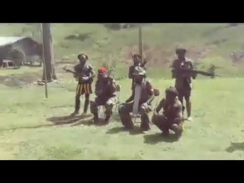 The West Papua National Liberation Army [TPNPB] - 1 Mar 2021