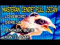 Masteran Cendet Full Isian  Mp3 - Mp4 Download