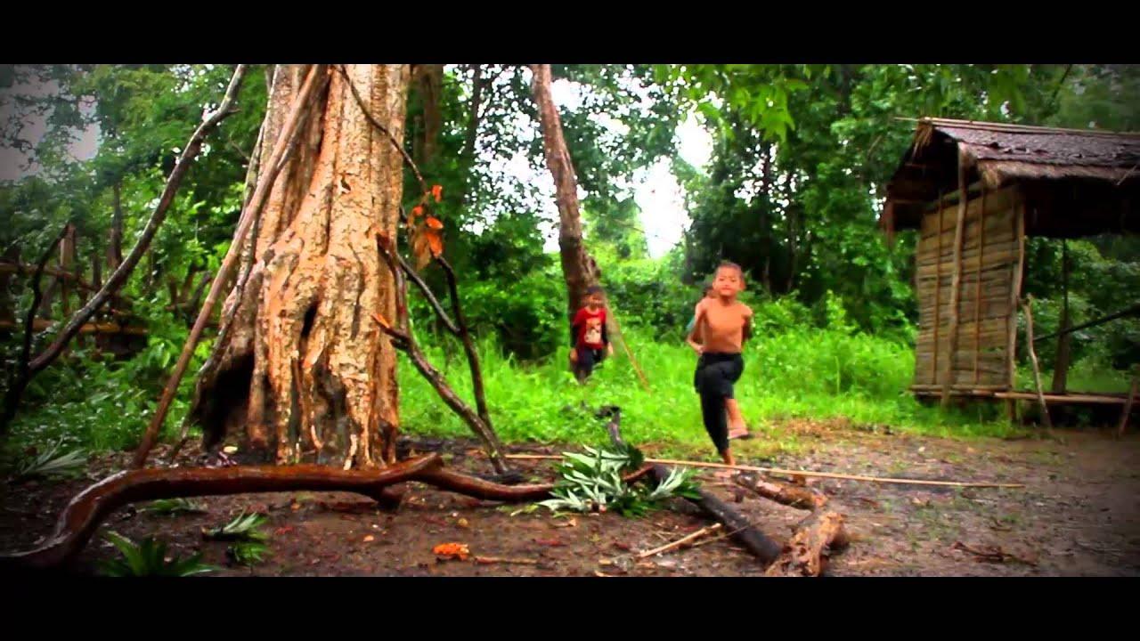 Virgin Forest Documentary Film - Official Trailer (HD) - YouTube