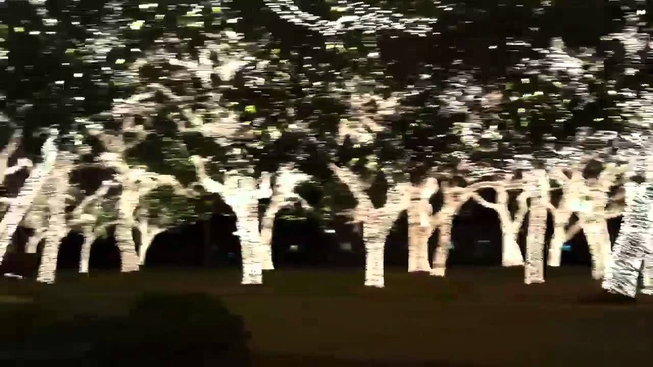 Christmas lights in Johnson City, Texas - YouTube