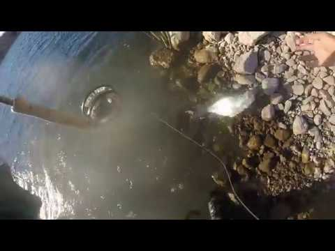 Fly Fishing San Carlos Lake, AZ