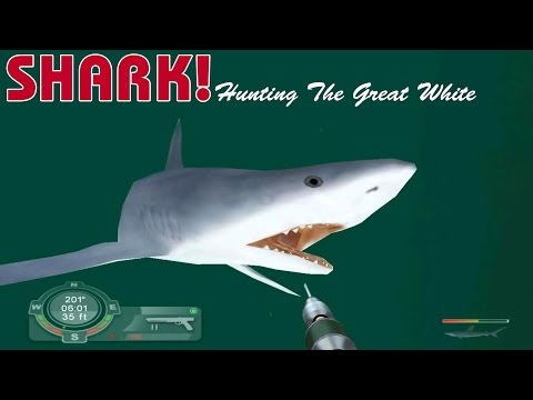 First Impressions On: Shark! Hunting The Great White