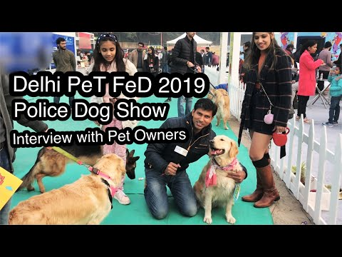 Pet Fed Delhi 2019 Dog Show  Police Dog Show  Meet all breed pets  Cats Dogs Fashion cloths