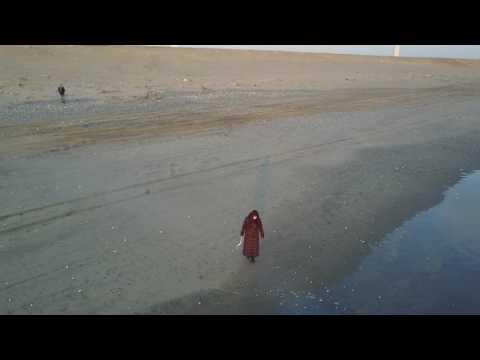 Morning seashore at Hazaki beach