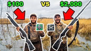 CHEAP vs EXPENSIVE Duck Hunting CHALLENGE!!! (CATCH CLEAN COOK)