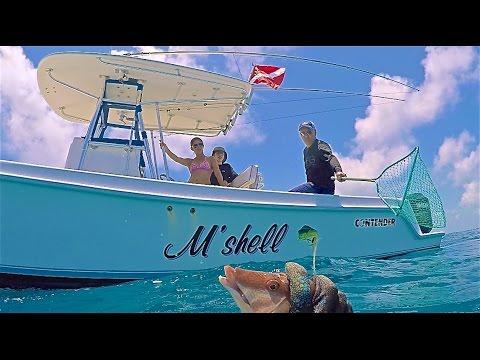 Spearfishing Florida Keys - Tavernier - Grouper, Hogfish, Snapper - 6-4-16
