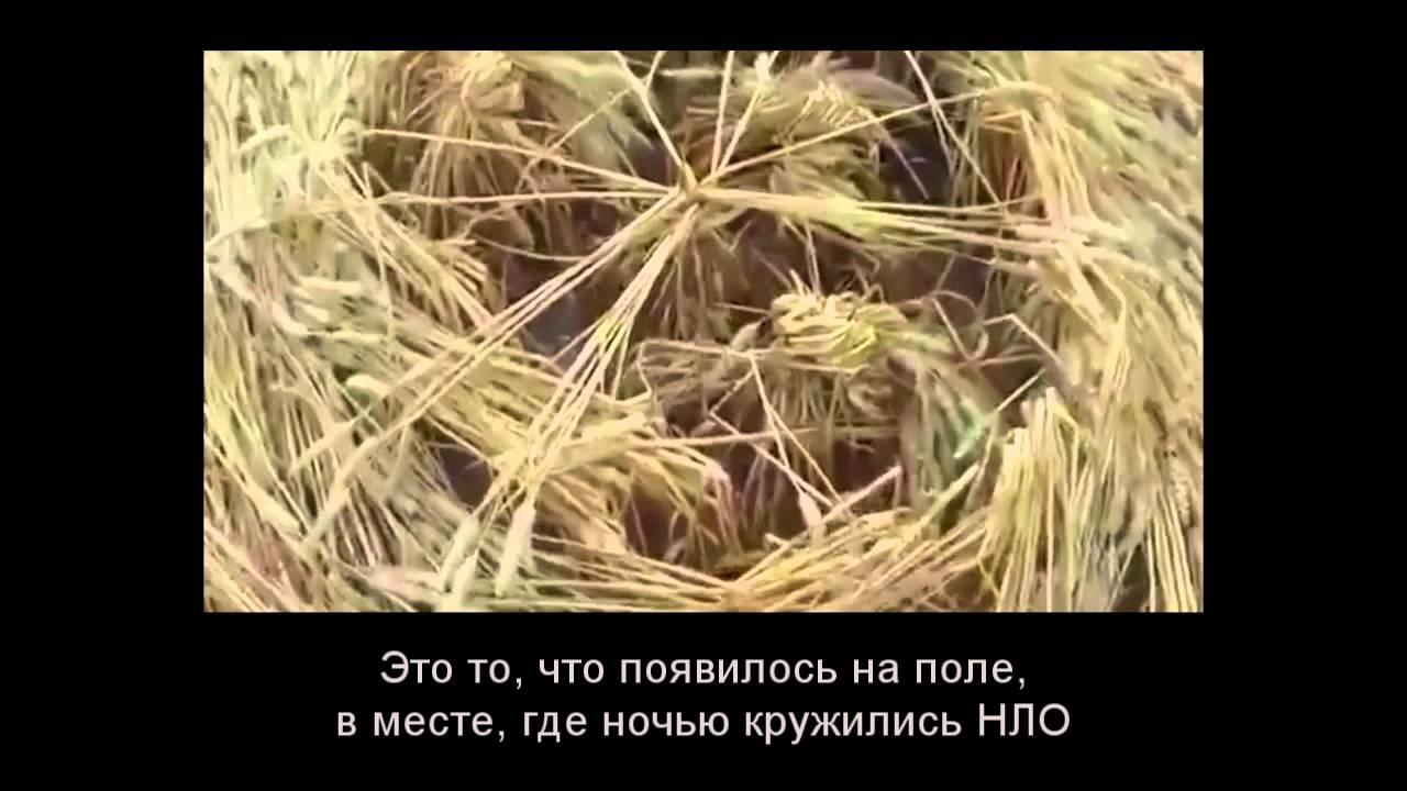 Чем рисуют круги на полях