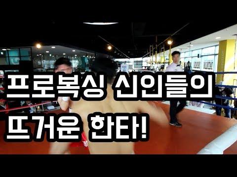 프로 데뷔 신인들의 뜨거운 한타! 열정에 박수를 보냅니다!! 크으!