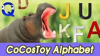 [EN] Huge hippo is eating alphabet! let's learn alphabet with CoCo, Collecta figure ㅣCoCosToy