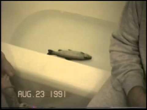 Fish in bathtub youtube for A fish in the bathtub