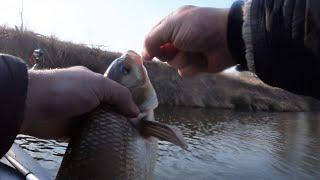 Весенняя рыбалка на Оке на поплавок 2020.Дальше запрет,ловля с берега до 10 июня .Ремикс.