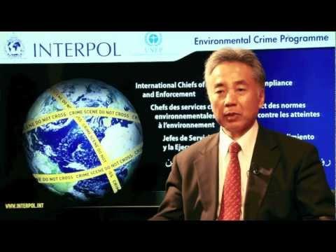 Masa Nagai, United Nations Environmental Programme
