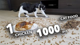 1000 pieces of cat food or 1 chicken?
