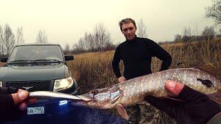 Рыбалка просто огонь Встреча с отличными друзьями Рыбалка на воблеры с aliexpress щука ведется