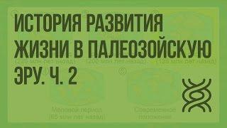 История развития жизни в палеозойскую эру. Ч. 2. Видеоурок по биологии 11 класс
