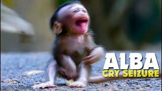 BREAKING HEART!!! Poor Baby Monkey Alba Crying Seizure Bagging Mum to Pick Up - Poor Life ALBA