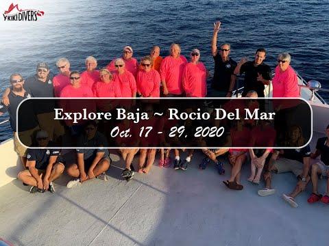 Y-kiki Trip Videos   Y-Kiki Divers Explore Baja Oct 2020