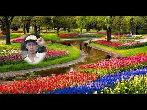 Pyar Gazab Ki Cheez Hai Jise Ho Jaye Bas Ho Jaye Sandeep Kumar