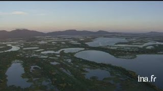 Brésil, Pantanal :activités économiques de la région de Poconé.