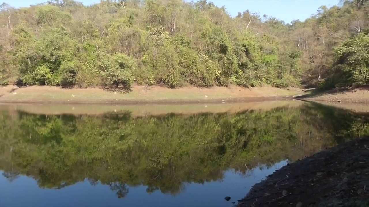 cycling to barvi dam bird watching paradise youtube