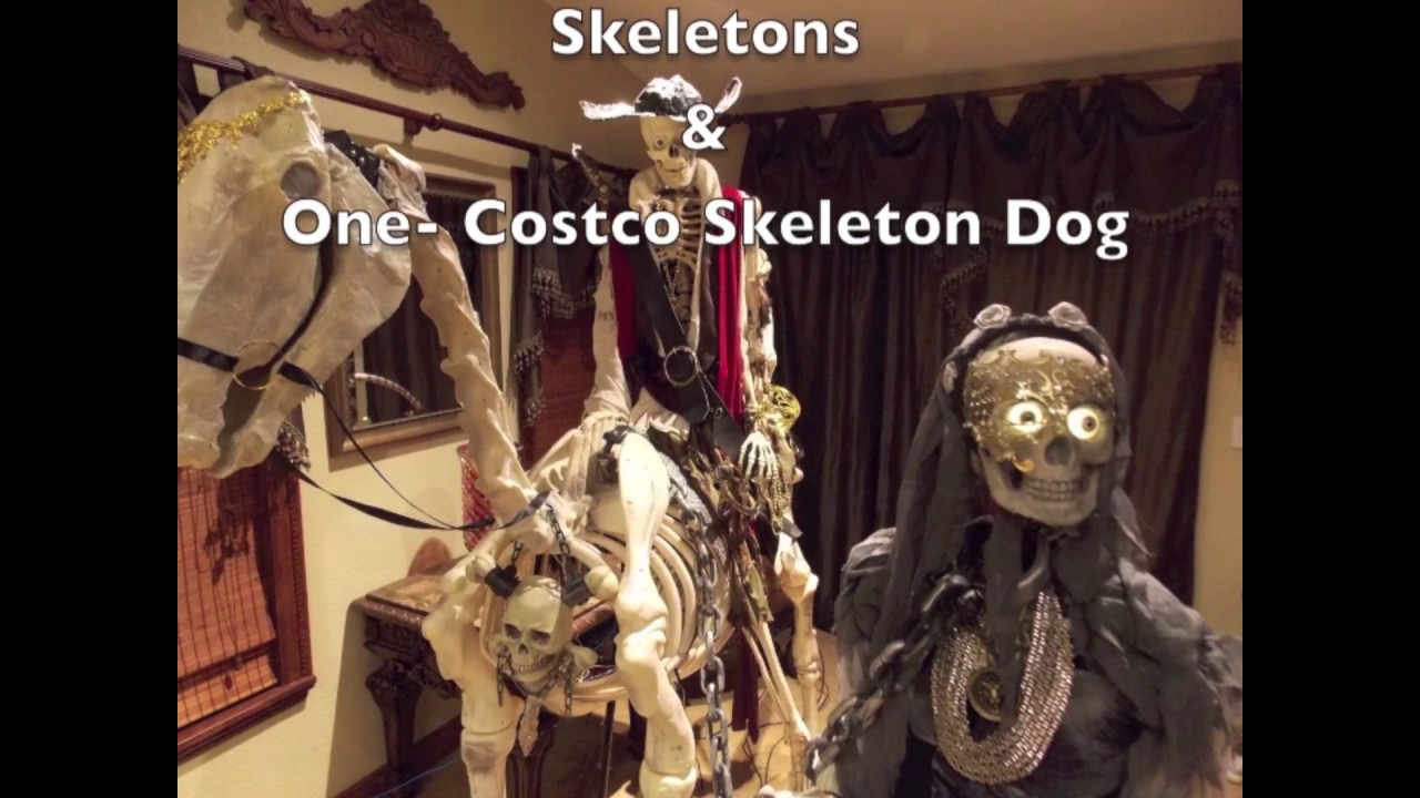 home depot skeleton horse and rider animated for halloween - youtube