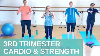 3rd Trimester Cardio, Strength and Core Workout | Pregnancy Prenatal | Jane Wake