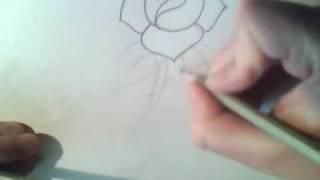 Jak narysować różę? / How to draw a rose