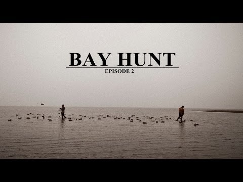 Duck Hunting -