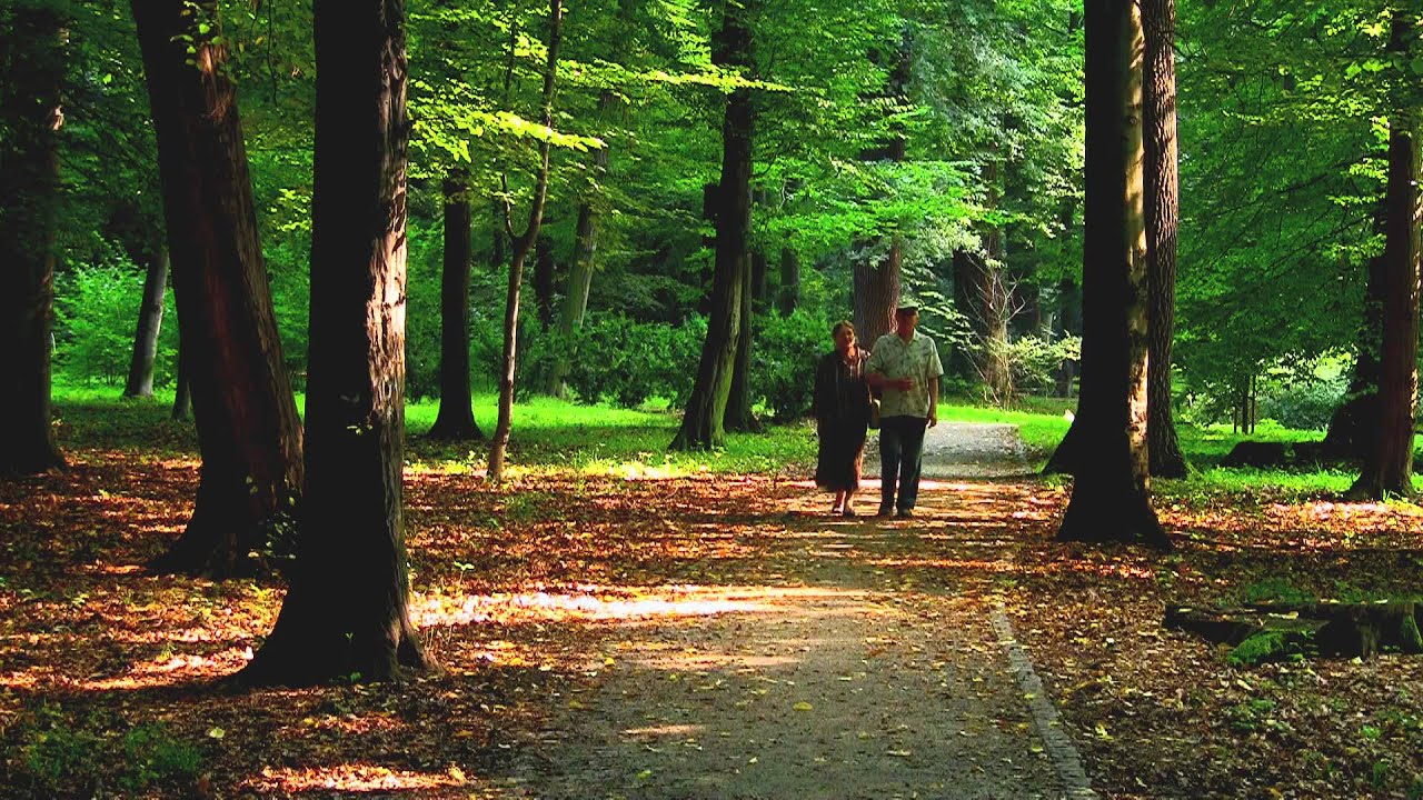 senior couple walking in park youtube