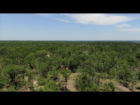 52 Wooded Acres For $1,500 Down! - Owner Financed Land For Sale In MO - ID#BS09 - InstantAcres.com