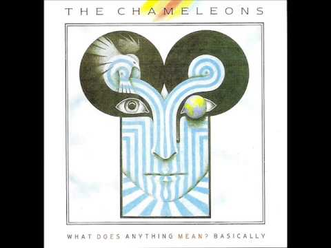 THE CHAMELEONS - What Does Anything Mean? Basically (Full Album)