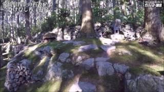ジブリにでてきそう! 苔の庭広がる森のカフェ『こけむしろ(苔筵)』【散策動画】