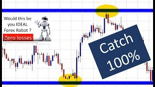 Catch 100 Percent of the trend using the ForexBouncer EA. The ideal Forex robot for a busy trader.