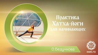 Йога для начинающих. Видео уроки. Практика хатха йоги для начинающих. Ольга Бедункова