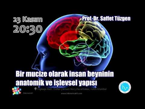 Bir mucize olarak insan beyninin anatomik ve işlevsel yapısı (ÖZET) - Prof. Dr. Saffet Tüzgen