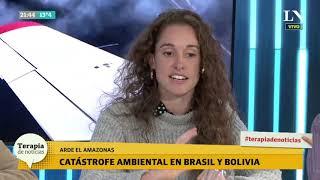 Catástrofe en el Amazonas: Bolsonaro despliega al ejército. El análisis de una especialista