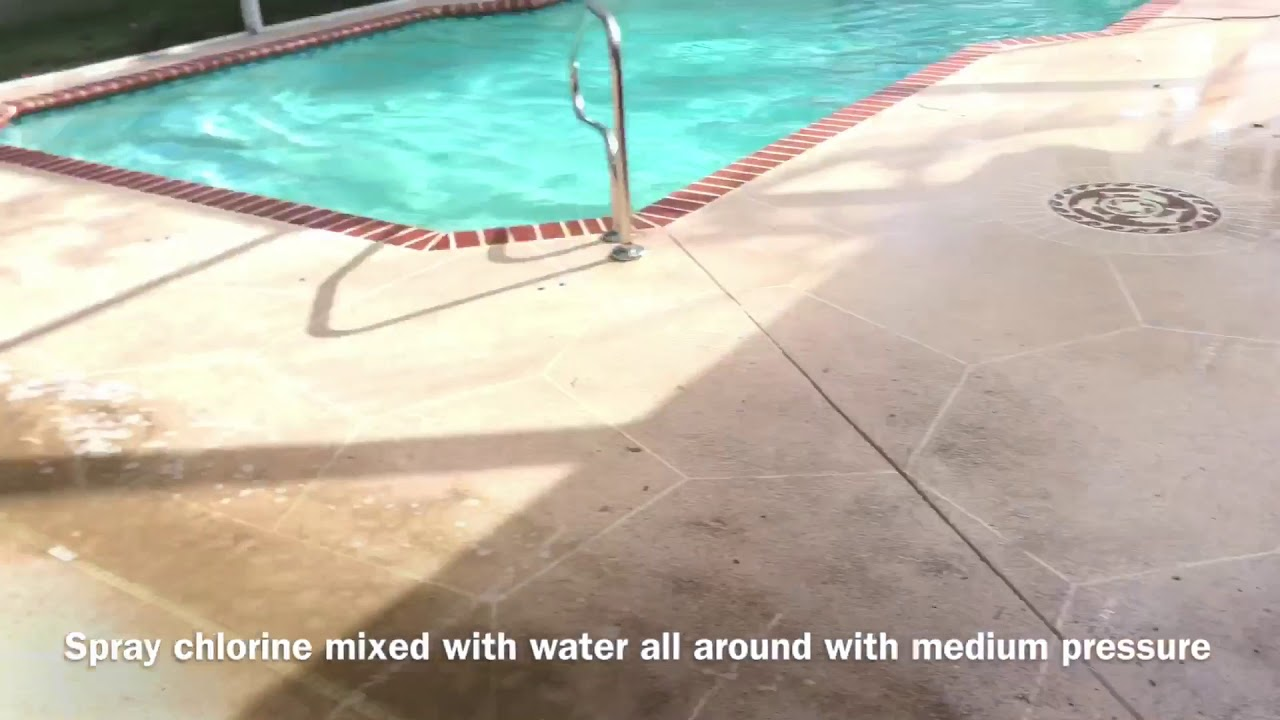 Pressure Wash Pool Deck And Screen