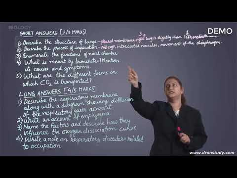 Breathing and Exchange of Gases   Class 11 12 Biology Video Lectures360p