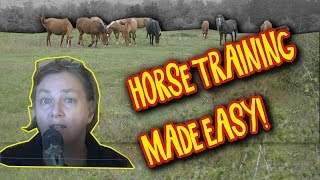 Horse Training Tips - Progress faster with fewer hiccups