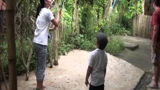 Noah Rambutan Picking San Pablo Laguna