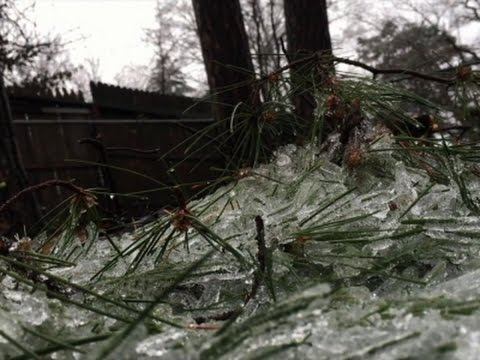 Illinois Residents Clean Up After Ice Storm