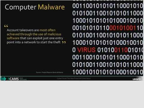 Case study: Cyber Fraud: The New Financial Crime Wave