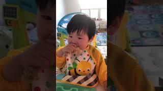 384일 아기 웨슬리 닭다리먹방