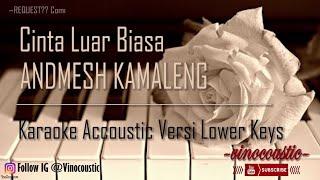 Andmesh Kamaleng - Cinta Luar Biasa Karaoke Akustik Versi Lower Keys