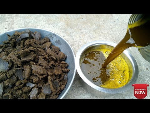 My Traditional Mustard oil || Serso oil machine || Village l