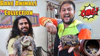 I MET WITH THE WILD MEN OF INDIA 😱😍- Super Rare Iguana, Turtles, Snakes, Gliders Etc.